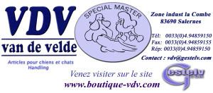 logo 2005 VDV